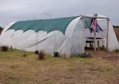 Primer-invernadero-realizado-por-vecinos