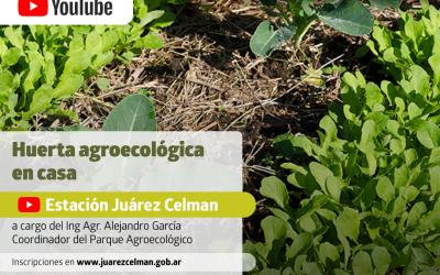«Huerta agroecológica en casa» Ciclo de Charlas Aniversario 2020